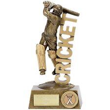 a1325c Resin Cricket Batsman Trophy 18.5cm free engraving
