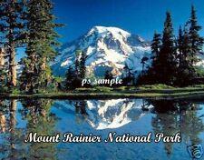 WA - MOUNT RAINIER NAT'L PARK - Travel Souvenir Flexible Fridge Magnet