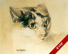 REALISTIC CAT WITH LOWERED EARS LOUIS WAIN PAINTING CAT ART REAL CANVAS PRINT