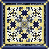 Quilt Kit/ Midnight in the Garden/Pre-cut Fabric Ready To Sew/French Country/QN