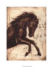 Weathered Equestrian Ethan Harper Fine Horse Art Print Poster Home Decor 715997