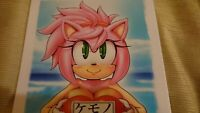 Doujinshi Sonic the Hedgehog (B5 22pages) Kemono kandume gaiden #4 furry fandom