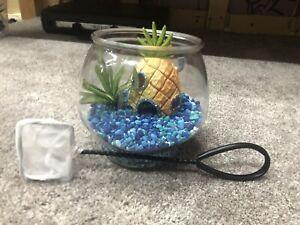 Spongebob Squarepants complete aquarium set