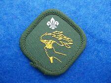 Vintage Scout Proficency Badge - Sports Enthusiast (2459)