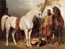 Oil painting Alfred Dedreux - The Mounts of Abd El Kader white and brown horses