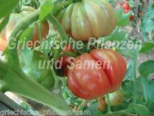 Tomate COSTOLUTO FIORENTINO POMODORO CUORE DI BUE 10 semi freschi balcone vaso