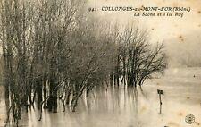 Carte COLLONGES AU MONT D'OR La Saône et l'Ile Roy