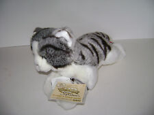 Webkinz Signature GREY TABBY CAT  WKSS2005 GANZ  PLUSH STUFFED KITTY NEW W/ CODE