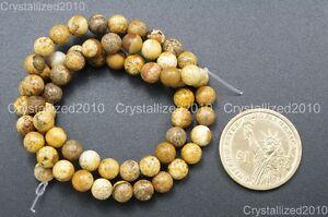 Natural Picture Jasper Gemstone Round Beads 2mm 4mm 6mm 8mm 10mm 12mm 14mm 16''