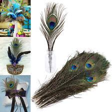 50pcs Plumas del pavo real naturales 24-30cm para Decorar Mascara Vestido tocado