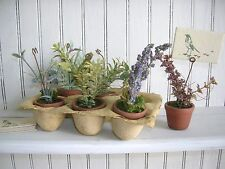 Place Card Holders~Potted Herbs~ Set of 6 ~Bethany Lowe~Wedding Shower Luncheon