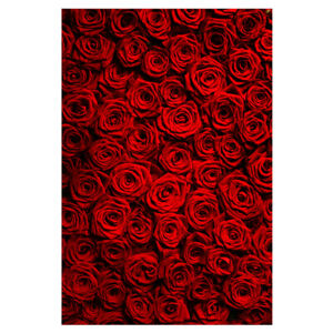 Red Rose Flower Wall Backdrop Wedding Decor Party Photo Background 5*7ft
