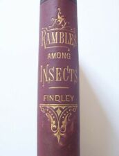 Rambles Among The Insects, 1878 Edition, History of Insects, Architectural Skill