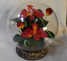 Glass Dome Artificial Orchid Arrangement
