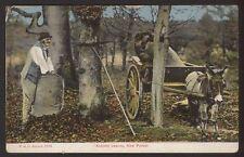 Hampshire. Autumn Leaves, The New Forest - 1936  F.G.O.Stuart Postcard No: 1394