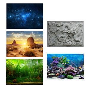 Aquarium Background Backdrop Fish Tank Reptile Terrarium Vivarium Wallpaper