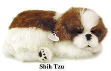 SHIH TZU- Il cucciolo che respira - PERFECT PETZZZ
