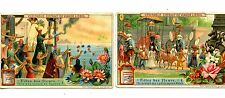 Fete of Flowers Set-Vintage Liebig French Advertising Trade Card Lot of 2