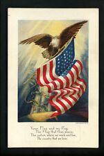 Flag postcard Patriotic Americana US Flag Series #4 eagle embossed
