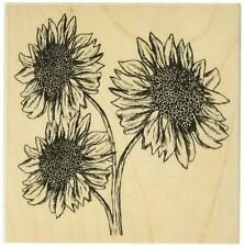 THREE SUNFLOWERS - HERO ARTS - Wood Mounted Rubber Stamp