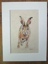 "Watercolour Hare, handmade paper,  print of original painting in 8"" x 6"" Mount"