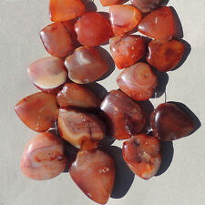 34 inch 87 cm strand shield and wedge shaped carnelian agate beads ghana #3990