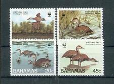 Bahamas 672 - 75 WWF UCCELLI-BIRDS ** (MNH)