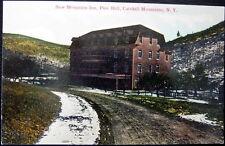 Pine Hill New York ~ 1900's Catskill Mountains ~ New Mountain Inn