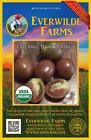 25 Organic Black Prince Heirloom Tomato Seeds Everwilde Farms Mylar Packet