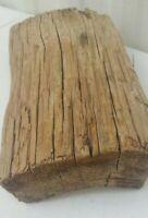 "Natural Driftwood Aquarium Taxidermy Beach House Weathered Clip Photo Frame 11"""