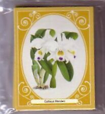 Orchids by Warner & Moore complete limited edition set of 20 Trading Cards