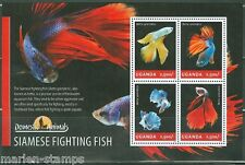 UGANDA 2014 DOMESTIC ANIMALS  SIAMESE FIGHTING FISH SHEET  MINT NH