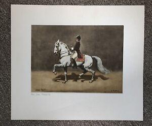 Antique Painted Silk Lipizzan Stallion Horse Dressage Signed J Plank Spain Tritt