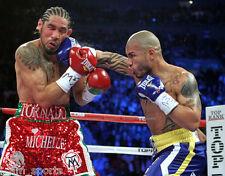 Miguel Cotto vs Antonio Margarito Ii Boxing Fight 8x10 Photo
