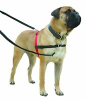 Halti Non Pull Dog Harness Puppy Training Control Black/Red Large Breed Dogs