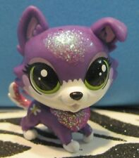 Littlest Pet Shop #300 DAZZLE COLLIER Sparkle Purple Collie Puppy Dog