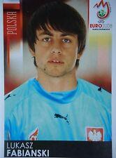 Panini 253 Lukasz Fabianski Polen UEFA Euro 2008 Austria - Switzerland