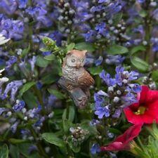 Miniature Garden Mini Hoot The Owl, Fairy, Dollhouse, Terrarium, Bonsai, New