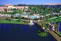 Sheraton Vistana Resort in Orlando, Florida ~2BR/Sleeps 8~ 7Nts June 30 - July 7