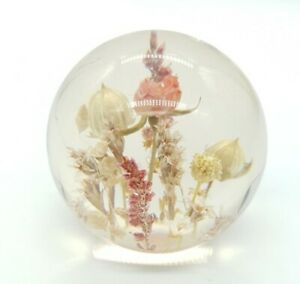 Vintage Hippocampus Embedments Lucite Paperweight Dried Floral Flowers 6cm high
