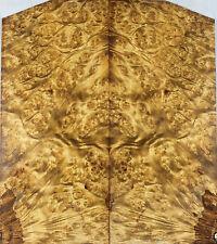 Bookmatch inlay Wood Birds-eye Golden Camphor Box Making marquetry veneer ZS030