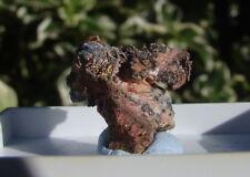 RARE NATIVE SILVER & ERYTHRITE Micromount Mineral Natural Scottish Scotland S2