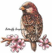 Bird On Flower Branch Stamp Cling Unmounted Rubber Stamp C.C. Designs JD1011 New