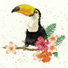 BOTHY THREADS TOUCAN OF MY AFFECTION HANNAH DALE COUNTED CROSS STITCH KIT XHD21