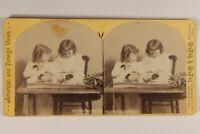 USA Bambini Pasqua Foto William Herman Rau Stereo Vintage Albumina c1880