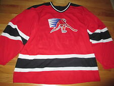 1928-1998 Coca-Cola Sponsor NAGANO OLYMPICS No. 98 CCM Hockey (LG) Jersey