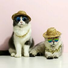 2020 New pet Cat Glasses - Funky Pet Sunglasses for small dogs and cats