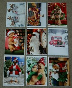 Lot 9 NEW Avanti All Christmas Funny Animal Greeting Cards & Envelopes