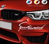 Sports Mind Decal Vinyl Car Stickers Headlight sticker for BMW 350mm