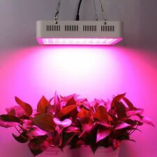 600W LED Grow Light Full Spectrum LED Panel Lamp for Hydroponic Plant